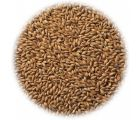 Солод ячменный копченый Cookie Malt EBC 40-70 (Viking Malt) 1 кг