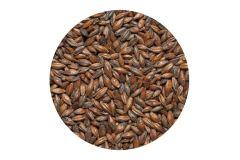 Солод ячменый Шоколадный EBC 900 (Курский солод) 1кг